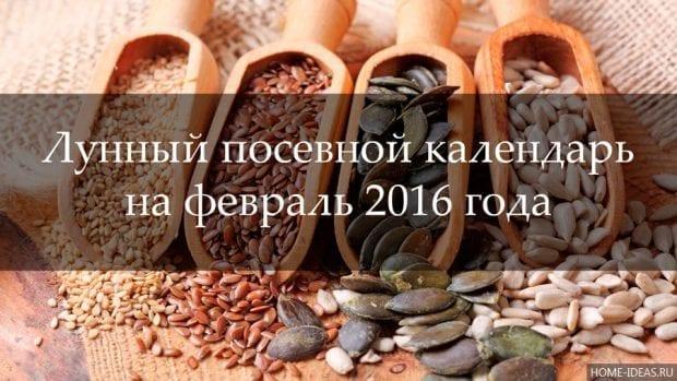 Лунный посевной календарь на февраль 2016 год: таблица
