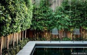 Отгородиться от взглядов: 7 способов добавить уюта своему двору